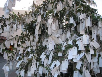 Wish Tree photo